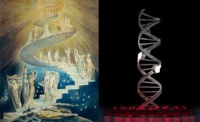 Chiếc thang lên trời & DNA