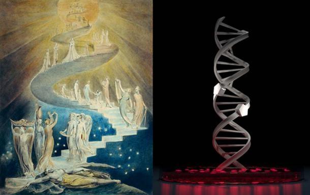Sự tương đồng ngẫu nhiên giữa chiếc thang lên Trời trong Thánh Kinh và chuỗi xoắn kép DNA - ảnh 4