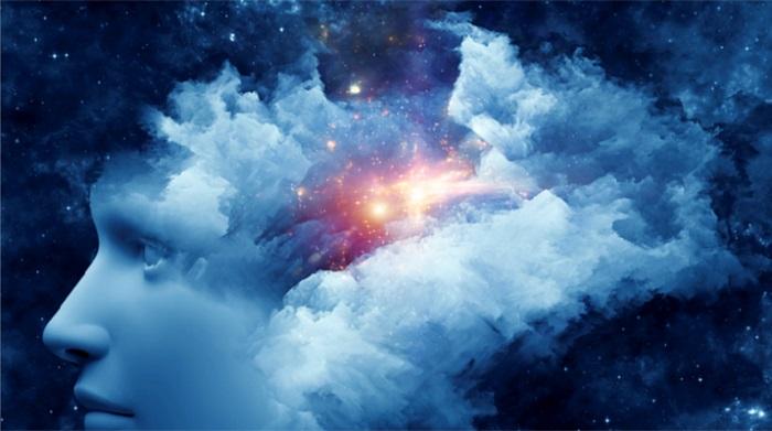 Đại não và linh hồn: Cuộc đối thoại giữa hữu hình và vô hình