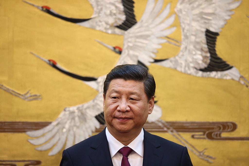 """Con chim là chữ Vũ """"羽"""", đứng bên trên chữ bạch """"白"""", đó chẳng phải là chữ Tập """"習"""" sao?"""