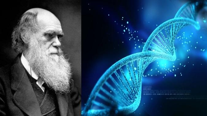 Kết quả hình ảnh cho phân tích ADN thuyết DArwin